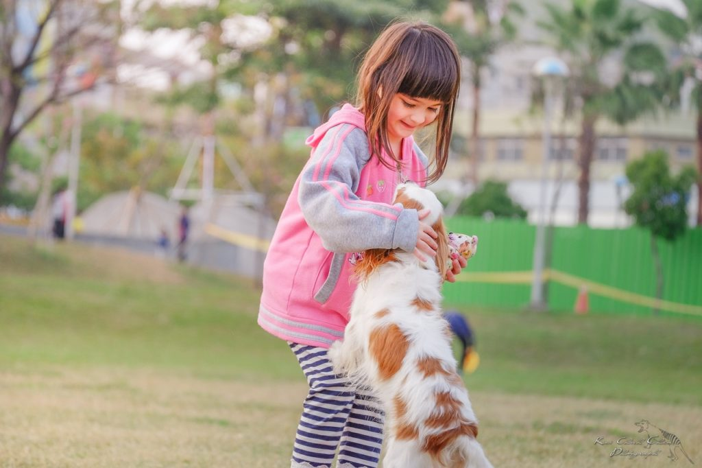 animal assisted therapy for children in GA